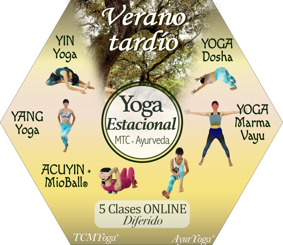 hexágono yoga verano tardío en diferido final