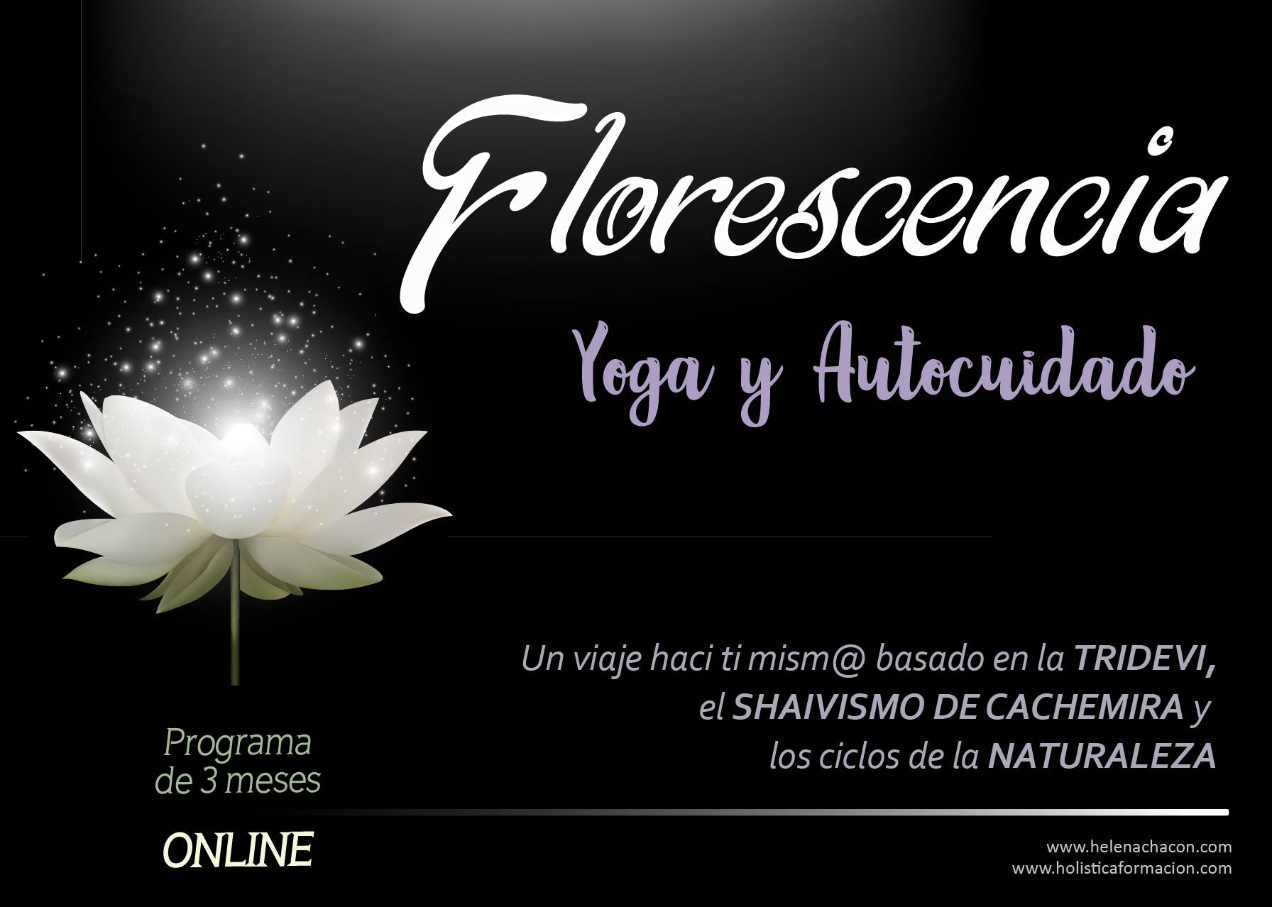 cartel florescencia6