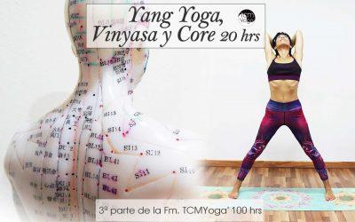Yang Yoga, Vinyasa y Core 20 hrs