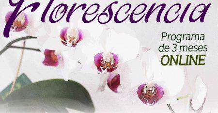 CARTEL FLORESCENCIA orquidea