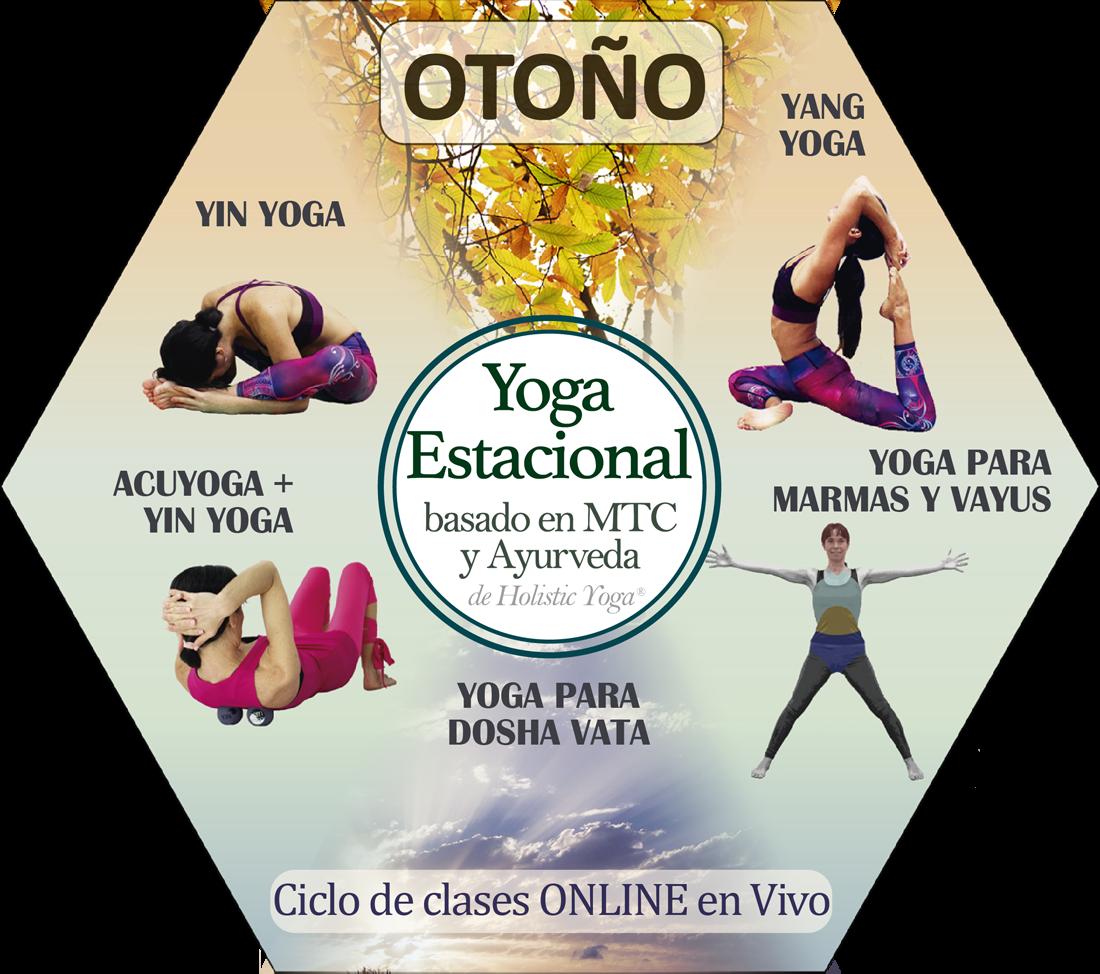 hexágono yoga estacional FINAL