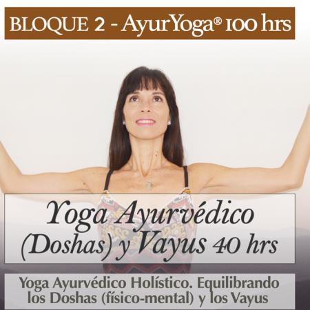 Yoga Ayurvédico y Vayus 40 hrs (Bloque 2 – Fm. AyurYoga®)