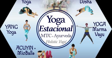 hexágono yoga invierno final