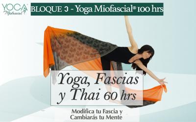 Yoga, Fascias y Thai 60 hrs (Bloque 3- Fm.Yoga Miofascial®)