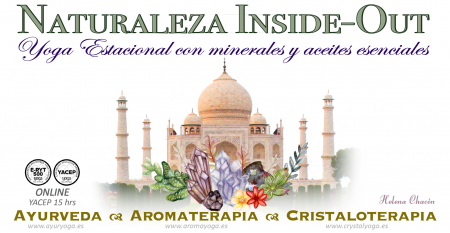 Naturaleza Inside Out