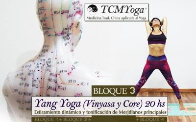 Yang Yoga, Vinyasa y Core 20 hrs  (Bloque 3 – Fm. TCMYoga®)